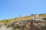Tussen Apiranthos en Filoti | Eiland Naxos | Foto 1